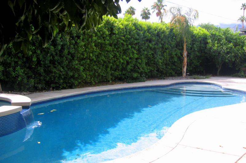Your palm springs area vacation in comfort and palm for Plush pad palm springs