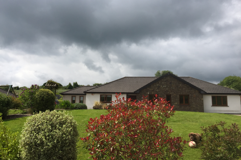 5 bedroom family home in an irish countryside cork love home swap - Countryside homes parents welcoming ...