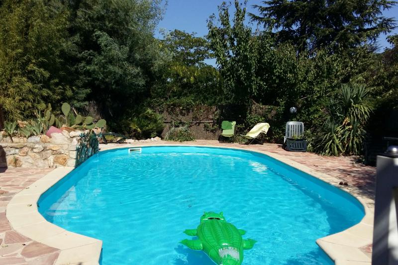 Mediterrannean Villa With Private Pool And Gardens Castelnou Languedoc Roussillon Midi