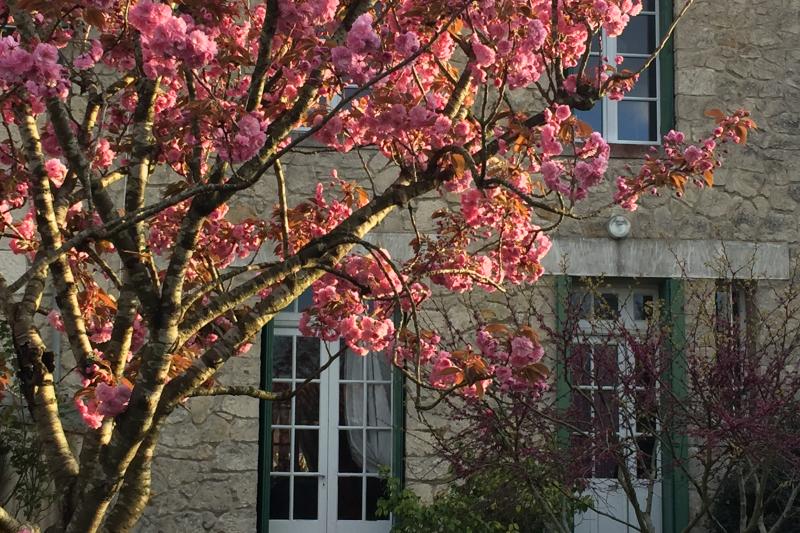 Maison de ville des ann es 30 avec jardin la rochelle nouvelle aquitaine love home swap - Maison de ville avec jardin ...